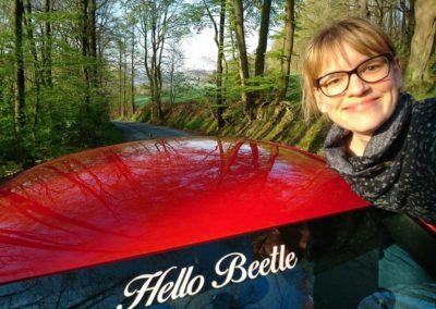 hello-beetle-sunshinetour-galerie-12