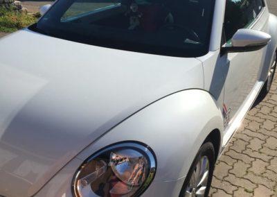 hello-beetle-sunshinetour-galerie-16