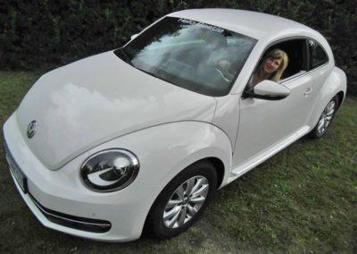 hello-beetle-sunshinetour-galerie-36